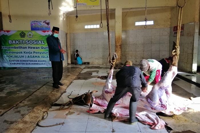 Pokjaluh Banjarnegara potong kurban di RPH